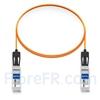 Image de 2m Extreme Networks 10GB-F02-SFPP Compatible Câble Optique Actif SFP+ 10G
