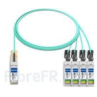 Image de 3m Brocade 40G-QSFP-4SFP-AOC-0301 Compatible Câble Optique Actif Breakout QSFP+ 40G vers 4 x SFP+