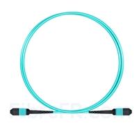 Image de 1m MPO Femelle 12 Fibres OM3 50/125 Câble Trunk Multimode, Type B, Élite, LSZH, Aqua