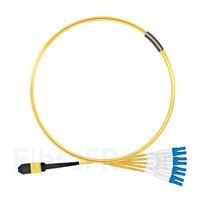 Image de 1m MPO Femelle vers 4 LC UPC Duplex 8 Fibres OS2 9/125 Câble Breakout Monomode, Type B, Élite, LSZH, Jaune