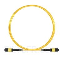 Image de 3M MTP-MTP Patch Cable Femelle 12 Fibres OS2 9/125 Monomode, Type B, LSZH, Jaune