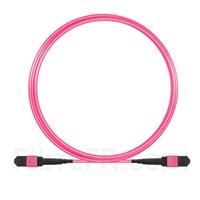 Image de 3m MTP Câble Trunk Femelle 12 Fibres OM4 (OM3) 50/125 Multimode, Type B, Élite, LSZH, Magenta