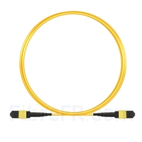 Image de 3m MTP Câble Trunk Femelle 12 Fibres OS2 9/125 Monomode, Type B, Élite, LSZH, Jaune