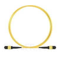 Image de 2m MTP-MTP Patch Cable Femelle 12 Fibres OS2 9/125 Monomode, Type B, Élite, Plénum (OFNP), Jaune