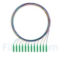 Image de 1m Pigtail à Fibre Optique à Code Couleur LC APC 12 Fibres OS2 Monomode, Sans Gaine