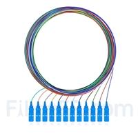 Image de 2m Pigtail à Fibre Optique à Code Couleur SC UPC 12 Fibres OS2 Monomode, Sans Gaine