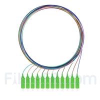 Image de 1m Pigtail à Fibre Optique à Code Couleur SC APC 12 Fibres OS2 Monomode, Sans Gaine