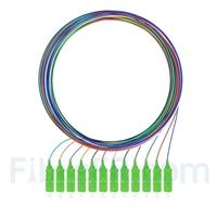 Image de 2m Pigtail à Fibre Optique à Code Couleur SC APC 12 Fibres OS2 Monomode, Sans Gaine