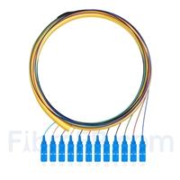 Image de 1,5m Pigtail à Fibre Optique SC UPC 12 Fibres OS2 Monomode Faisceau PVC (OFNR) 0,9mm