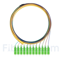 Image de 1,5m Pigtail à Fibre Optique SC APC 12 Fibres OS2 Monomode Faisceau PVC (OFNR) 0,9mm